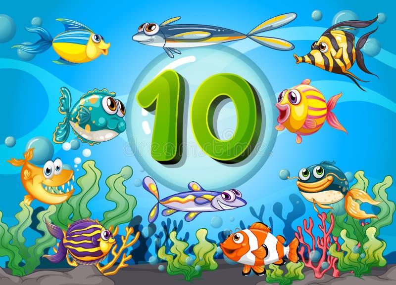 Flashcard number ten with 10 fish underwater vector illustration