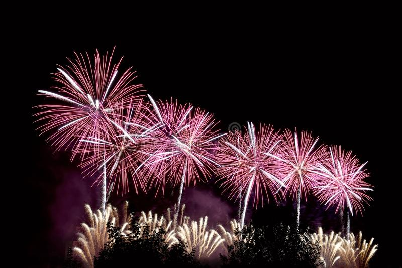 Flashes of purple salute and white fireworks royalty free stock photography