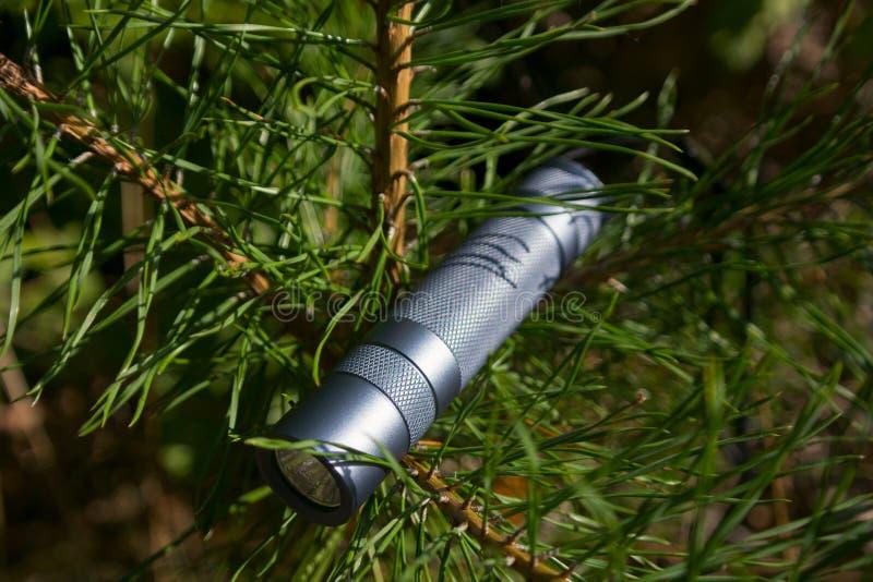 Flashlight on green tree stock photo