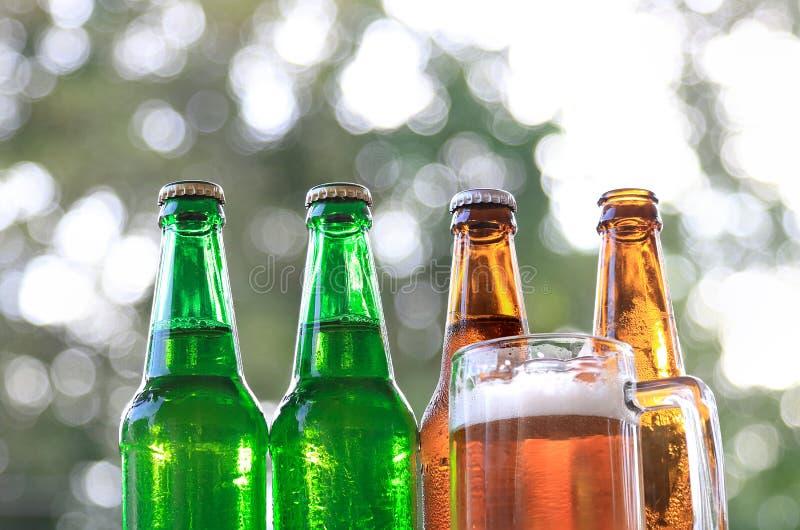 Flasköl och öl i ett exponeringsglas royaltyfria foton