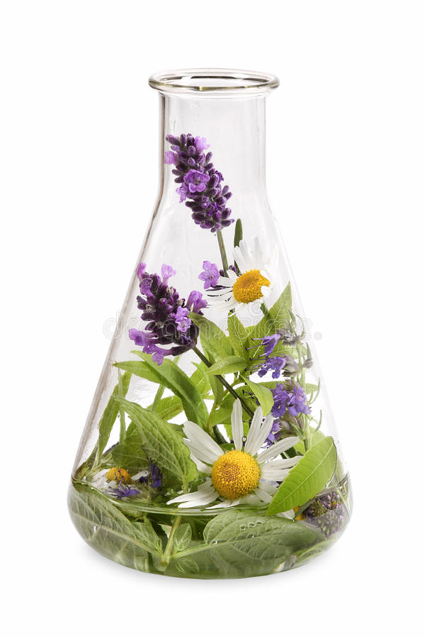 Flask with medicinal herbs royalty free stock images