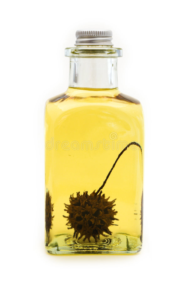 Flask of oil with sweetgum fruit royalty free stock photography