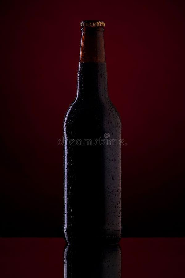 Flaska av öl på mörker - röd bakgrund. fotografering för bildbyråer