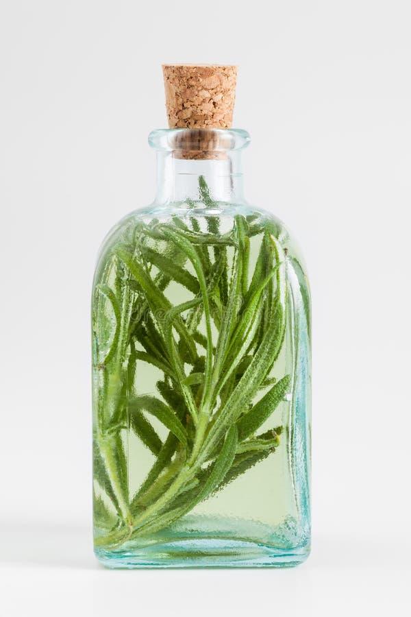 Flaska av den nödvändiga rosmarinolja eller avkokcloseupen royaltyfri bild