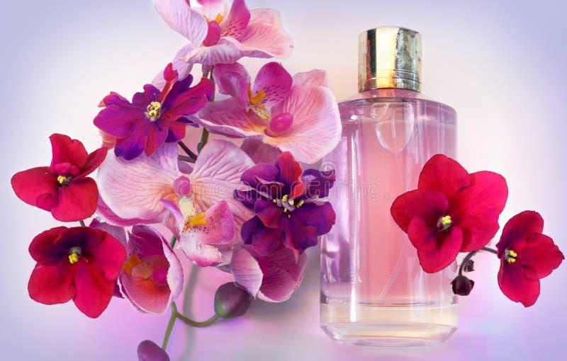 Flaska av doft för kvinna` s på en rosa bakgrund arkivbild