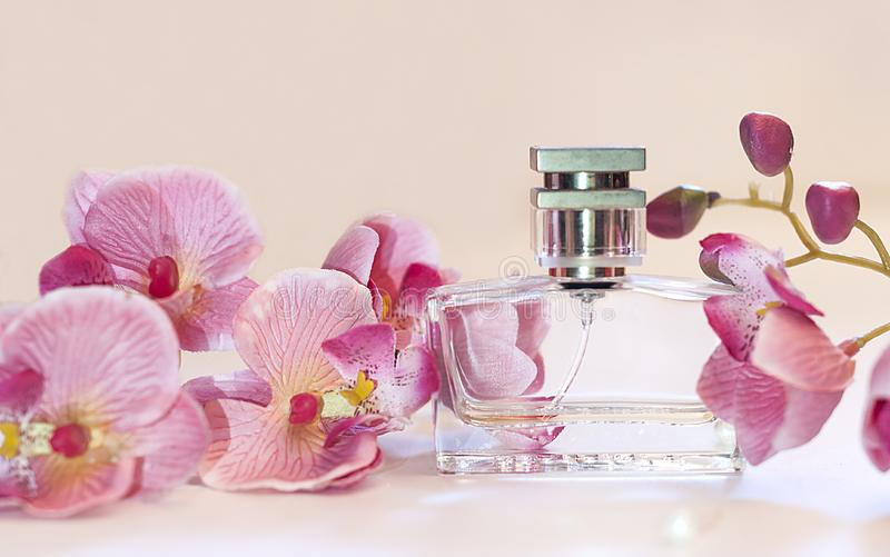 Flaska av doft för kvinna` s på en rosa bakgrund royaltyfri bild