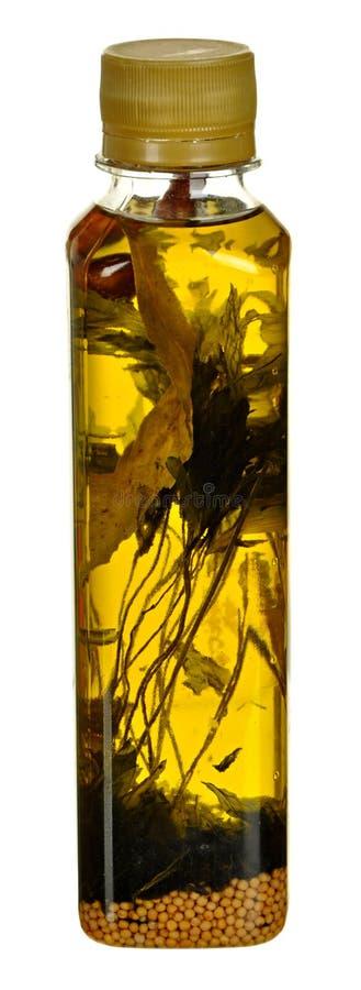 Flaska av grönsakolja med växt- för att laga mat som isoleras på vit bakgrund med den snabba banan arkivfoton