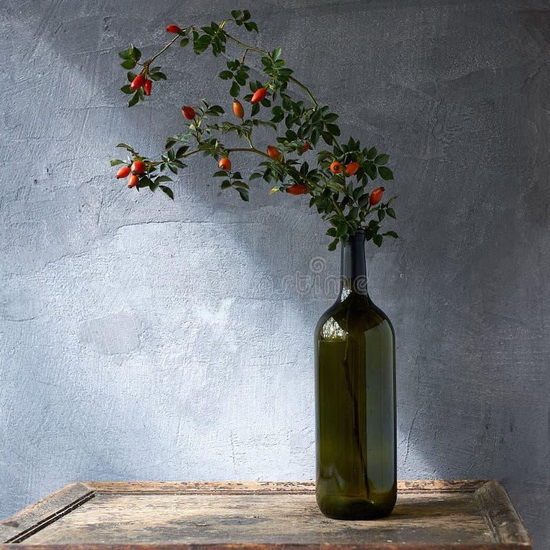 Flaska av nödvändig olja av rosa höfter på träbakgrund royaltyfri bild