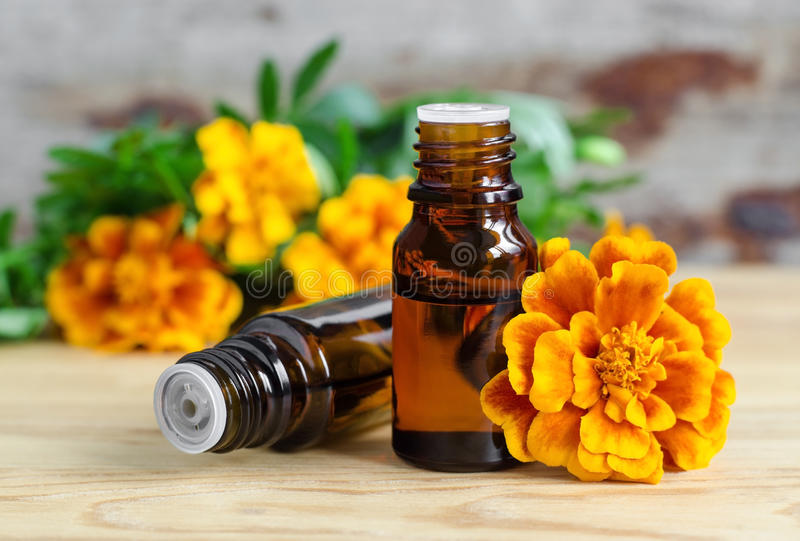 Flaska av nödvändig ringblommaolja (Tagetes blommor extrakt, tinktur, avkoken) arkivfoton
