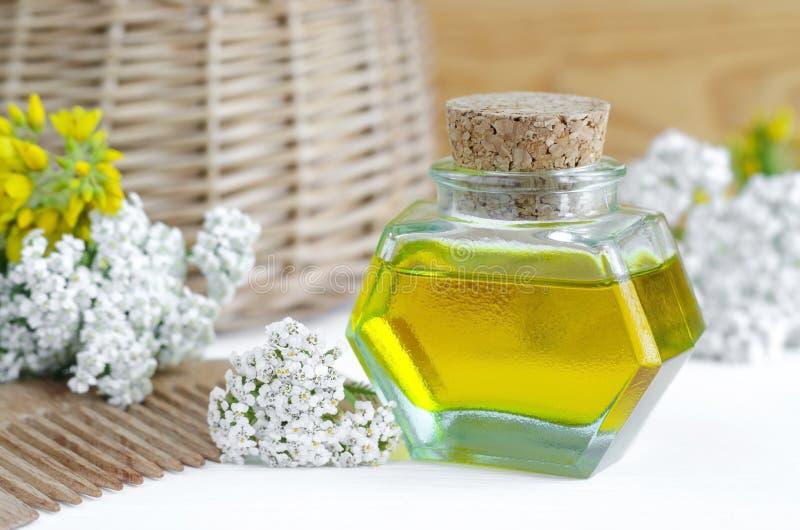 Flaska av yarrowolja (extrakt, tinktur, avkok) och trähårhårkammen för naturlig håromsorg royaltyfria bilder