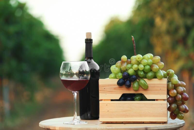 Flaska och exponeringsglas av rött vin med nya druvor på trätabellen royaltyfria foton