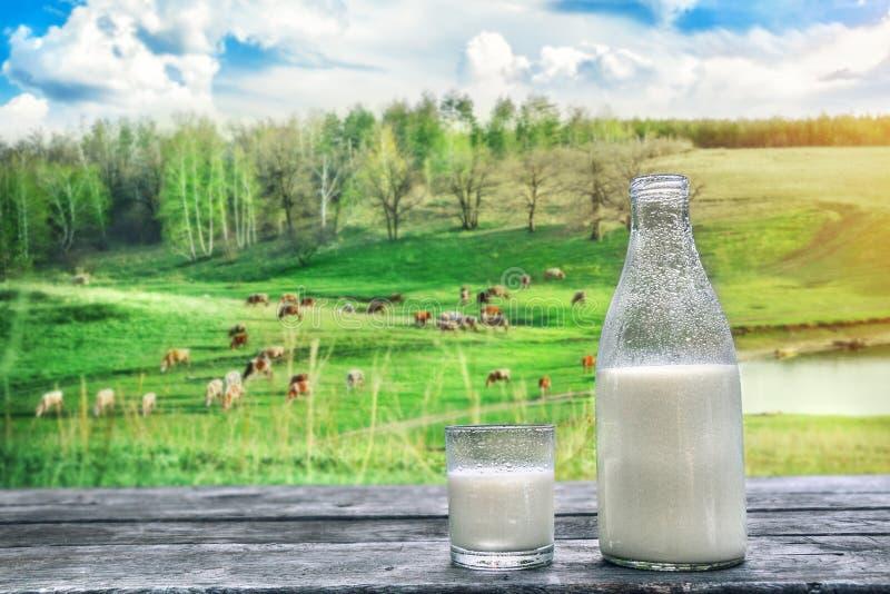 Flaskan och exponeringsglas av förkylning mjölkar på trätabellen nya produkter för mejeri mot bakgrund field blåa oklarheter för  arkivbild