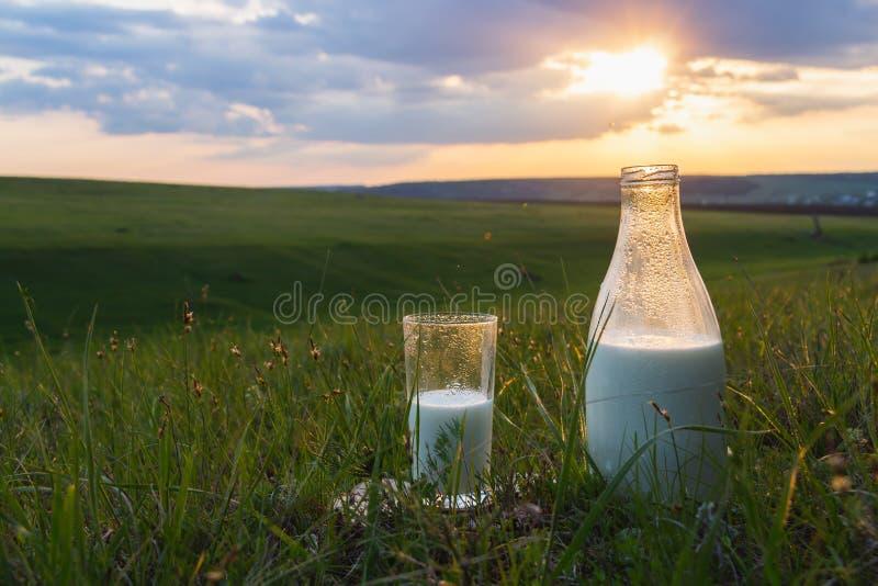 Flaskan och exponeringsglas med mjölkar på gräset mot en bakgrund av pittoreska gröna ängar med blommor på solnedgångsommardagen royaltyfria bilder