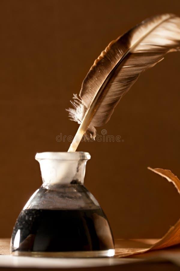 flaskfjäderfärgpulver arkivfoto