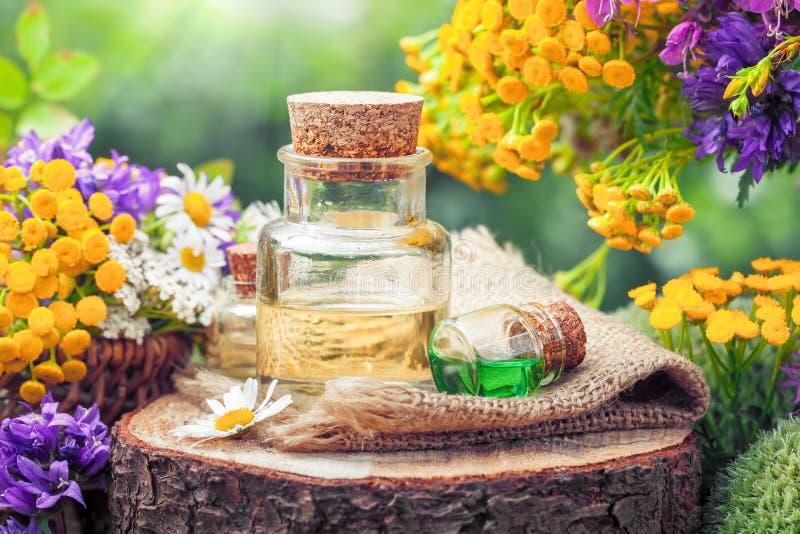 Flaskor av nödvändig olja eller dryck och att läka örter och blommor arkivbilder