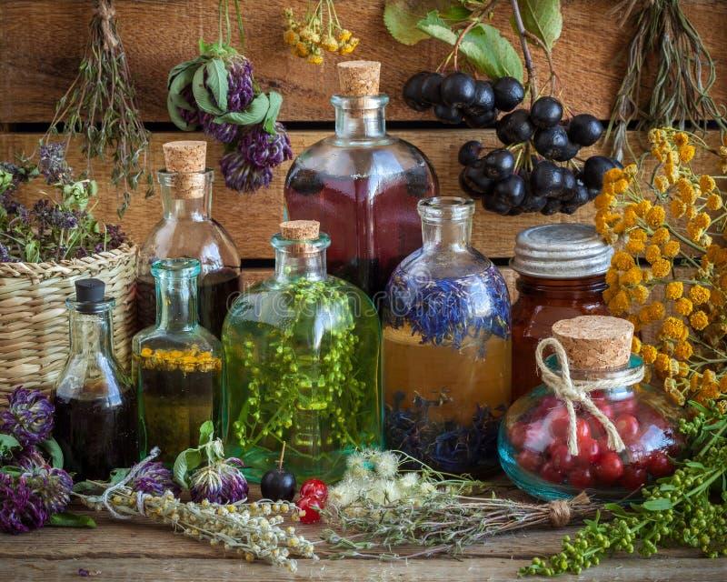 Flaskor av tinktur, dryck, olja, sunda bär och örter royaltyfri foto