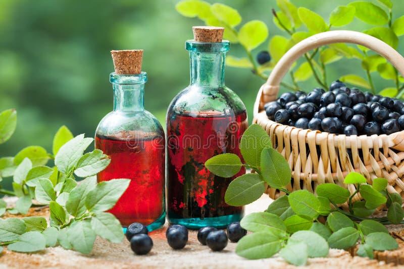 Flaskor av tinktur eller skönhetsmedelprodukt och korg med blåbär royaltyfri foto