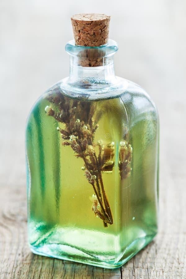 Flaskor av växt- nödvändig olja eller avkoken arkivfoton