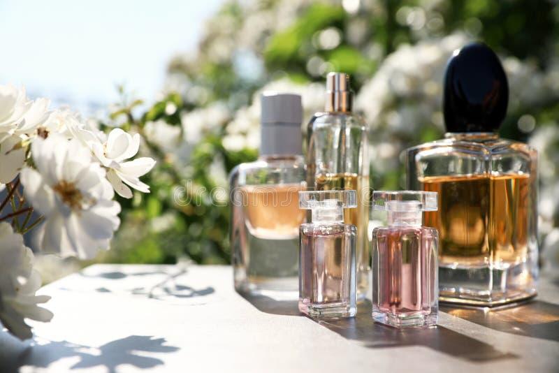 Flaskor med lyxiga dofter på tabellen i trädgård royaltyfri bild