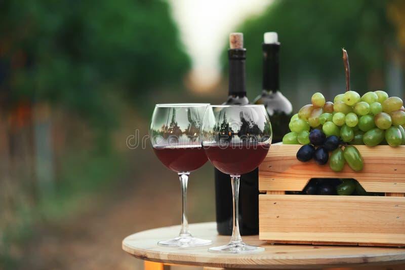 Flaskor och exponeringsglas av rött vin med nya druvor arkivfoton