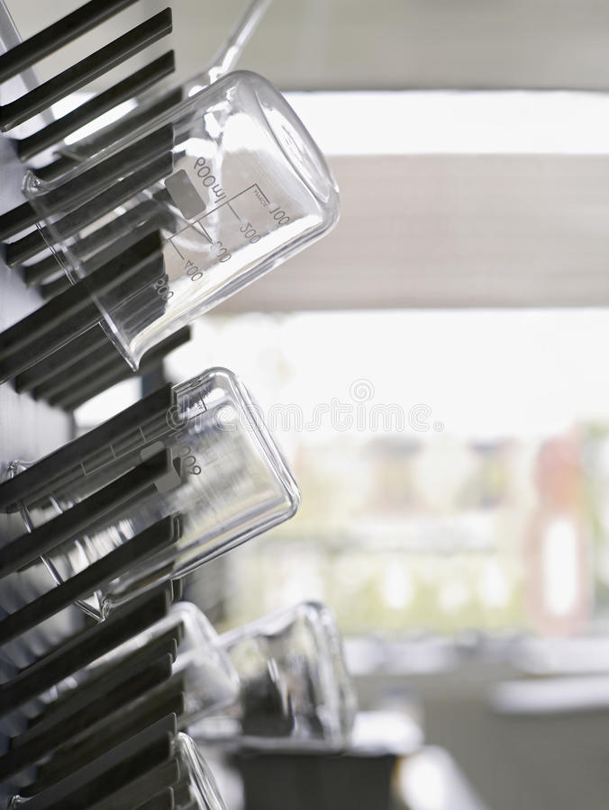 Flasks On Drying Rack In Laboratory royalty free stock photo