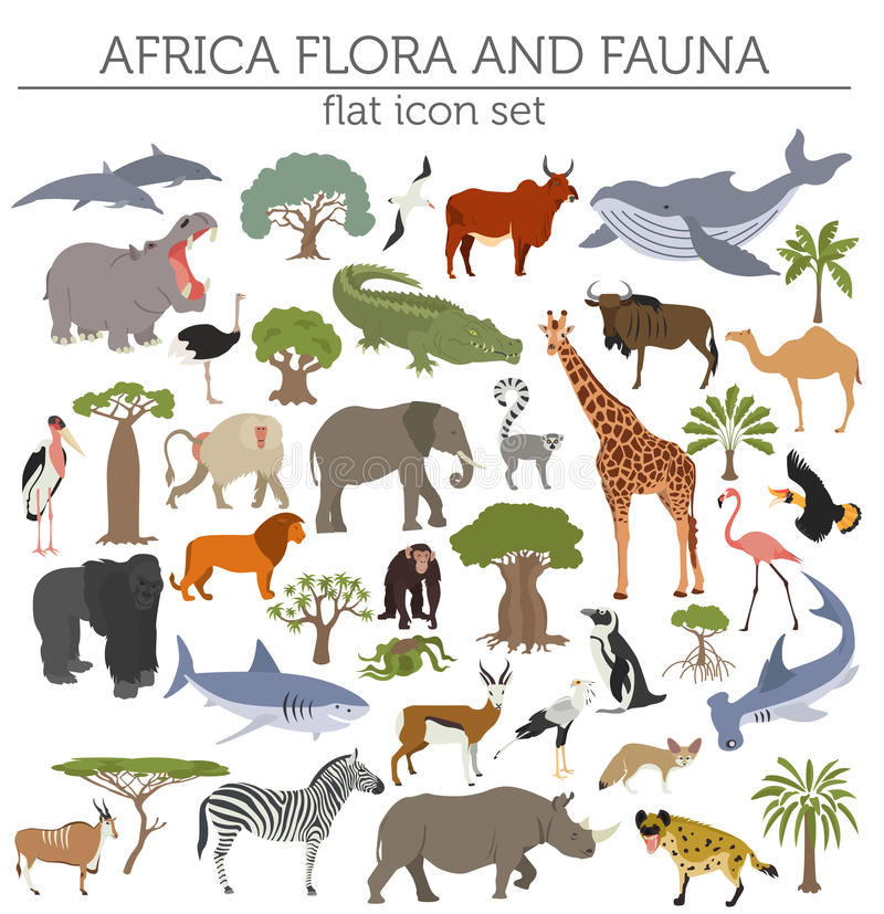 Flat Africa flora and fauna map constructor elements. Animals, b. Irds and sea life on white big set. Build your own geography infographics collection. Vector vector illustration
