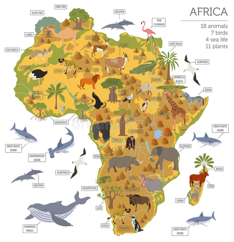 Flat Africa flora and fauna map constructor elements. Animals, b. Irds and sea life on white big set. Build your own geography infographics collection. Vector stock illustration