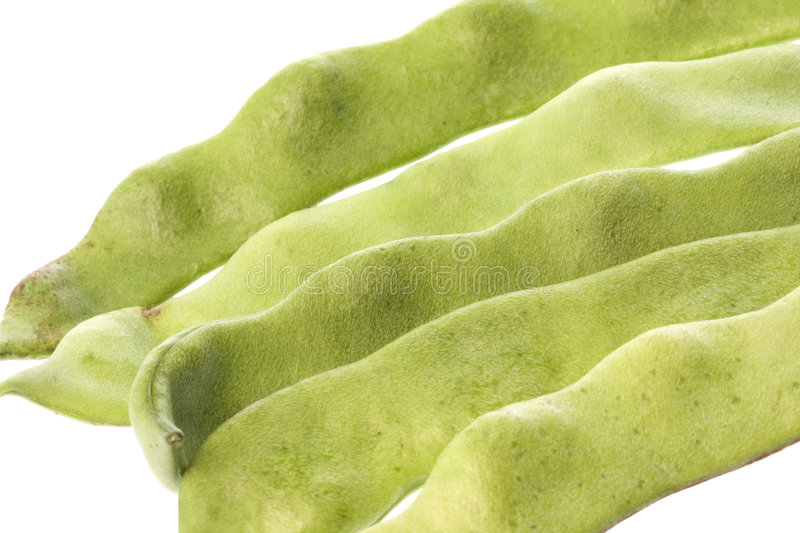 Download Flat Beans Isolated stock photo. Image of flatbean, isolated - 6967718