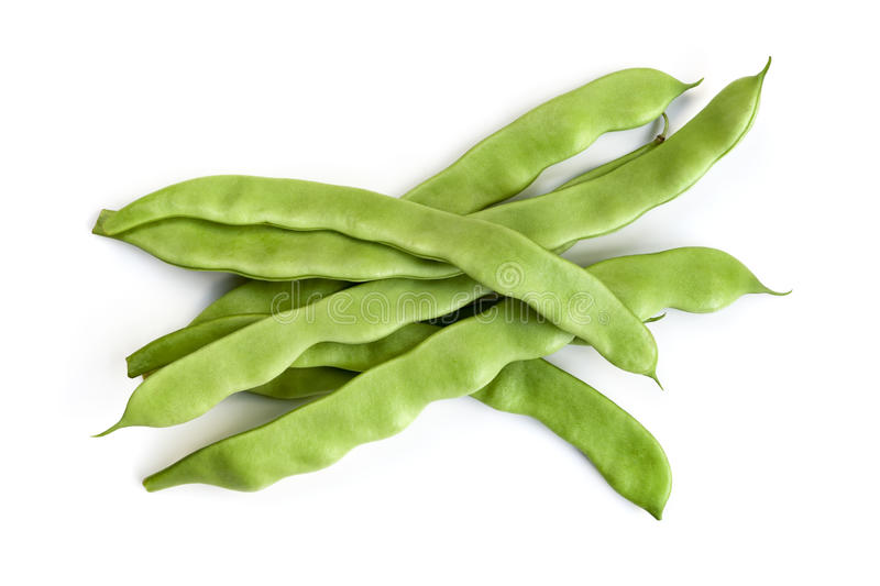 Flat Beans Isolated. On white background royalty free stock image