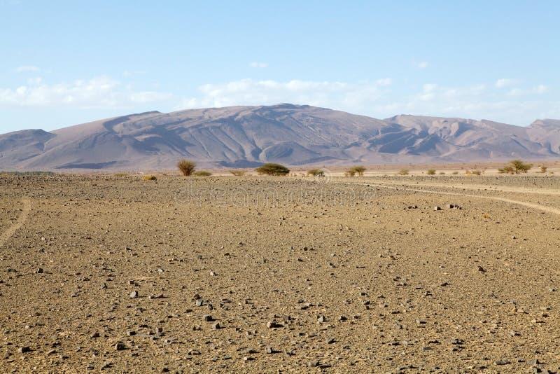 Download Flat desert stock image. Image of african, anti, wilderness - 26909843