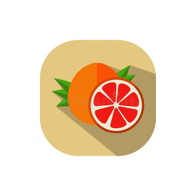 Flat design Red Pomelo. Vector. Flat design. Icon of red pomelo vector illustration