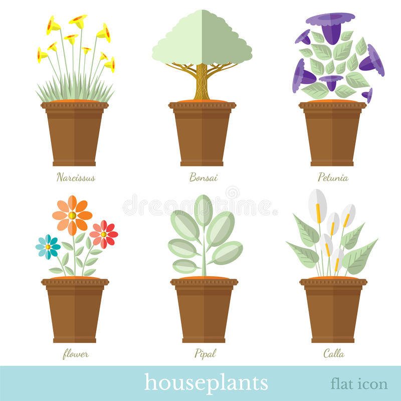 Flat design set of house plant and flower with flowerpot set. Flat design set of house plant and flower with flowerpot vector illustration