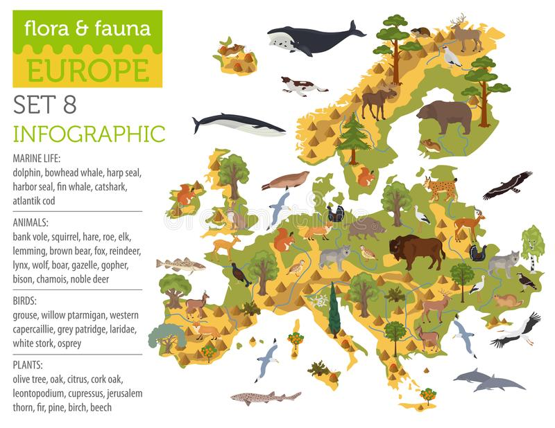 Flat European flora and fauna map constructor elements. Animals, birds and sea life isolated on white big set. Build your own geo. Flat European flora and fauna royalty free illustration