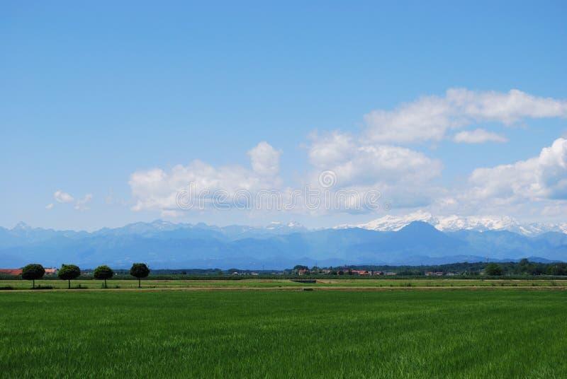Flat farmland stock photography