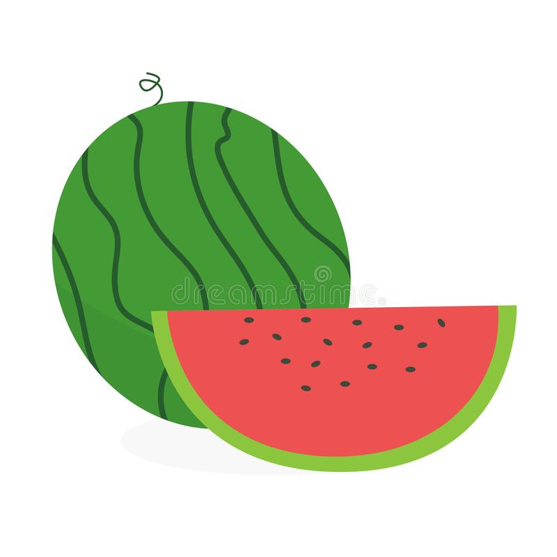 Flat fresh watermelon with slice vector illustration. Cute watermelon on white background vector illustration