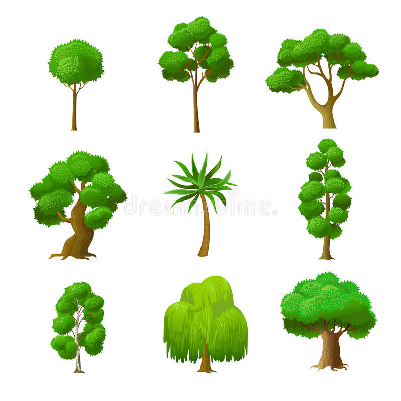 Flat green garden forest icons trees vector. Natur. Flat green trees vector illustration set. Alder, maple, palm, oak, willow, birch, garden and forest tree stock illustration