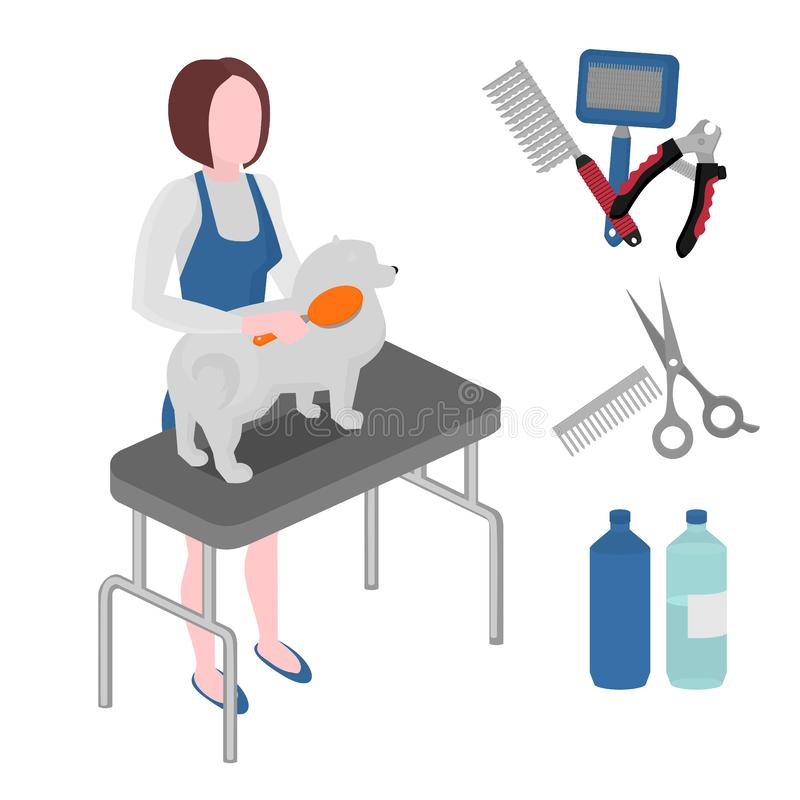 Flat grooming salon equipment set, dog haircut tools icons. Doggy girl groomer collection, nail clipper, cutter, Slicker and brush. Comb, scissors and vector illustration