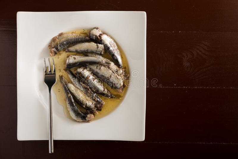 Flat lay above marinated sardines in oil served on a white plate royalty free stock image