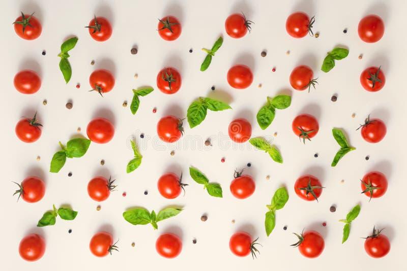 Flat lay of beautiful trendy seamless pattern cherry tomato, dry royalty free stock photos