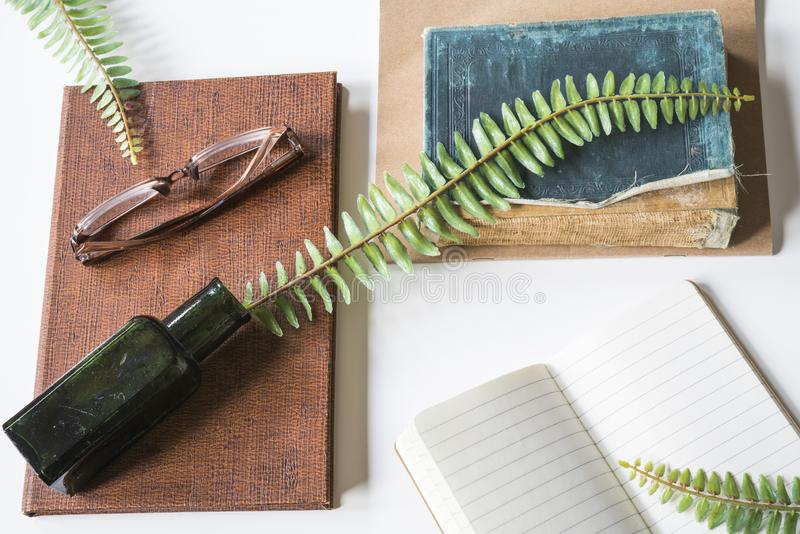 vintage books with ink pot, goose feather glasses and twig, on white desk royalty free stock image