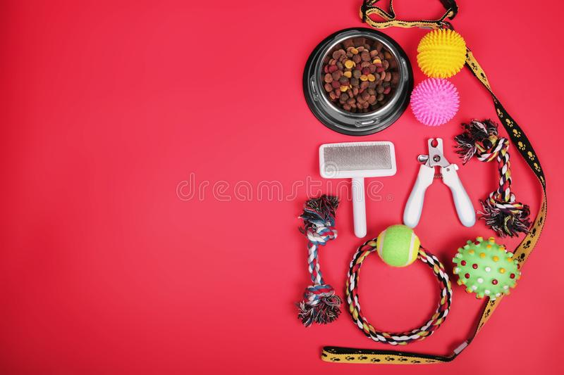 Flat lay composition with accessories for dog and cat, toys, dry food, biscuits, cookies, pet food. royalty free stock photos