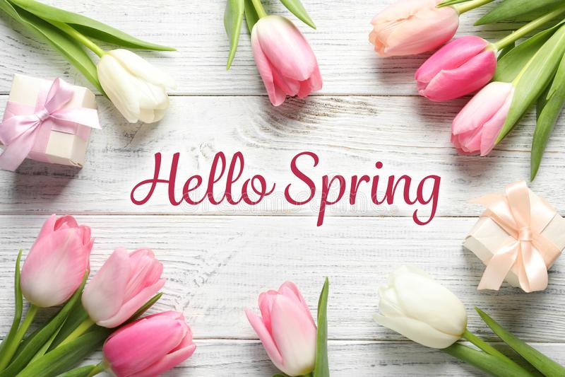 Flat lay composition of beautiful flowers and text Hello Spring. On light wooden background royalty free stock photography