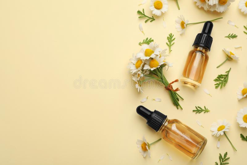Flat lay composition with chamomile flowers and cosmetic bottles of essential oil on color background stock photos