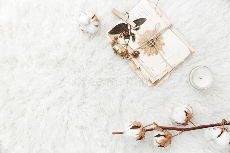 Flat lay composition with dry flowers, cotton and old letters. royalty free stock photos