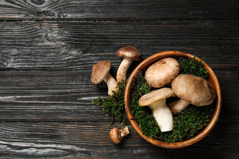 Flat lay composition with fresh wild mushrooms on wooden table, space for text stock images