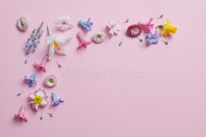 Flat lay composition with hyacinth and other spring flowers on color background. Space for text stock images