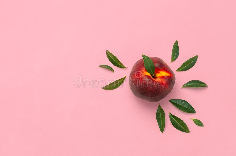 Flat lay composition with peaches. Ripe juicy peaches with green leaves on pink background. Flat lay, top view, copy space. Fresh stock image