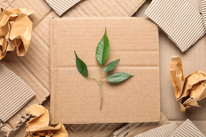 Flat lay composition with cardboard and green branch. Recycling problem. Flat lay composition with pieces of cardboard and green branch. Recycling problem royalty free stock photos