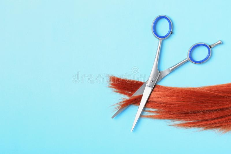 Flat lay composition with red hair, scissors and space for text. Hairdresser service. Flat lay composition with red hair, scissors and space for text on color royalty free stock photo