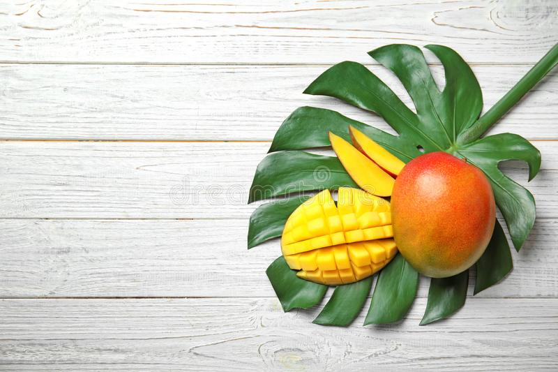 Flat lay composition with ripe mangoes, monstera leaf and space for text royalty free stock images